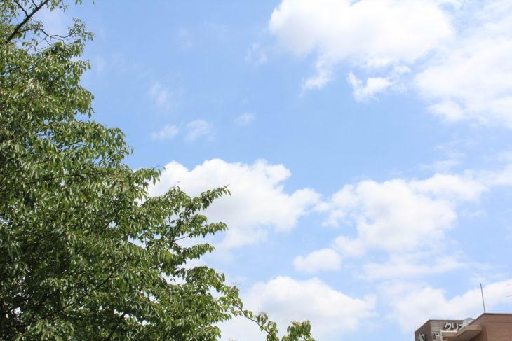 職人目線!!!茅ケ崎市萩園K様邸【屋根塗装】||さむかわ塗装